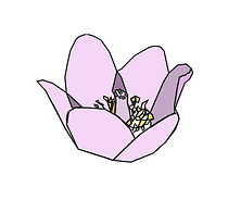 wildflower2.JPG