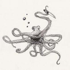 2017_05 Octopus.jpg