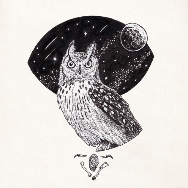2018_037 Inktober18 Owl.jpg