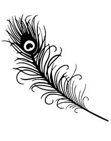 peacock feather b&W_edited.jpg