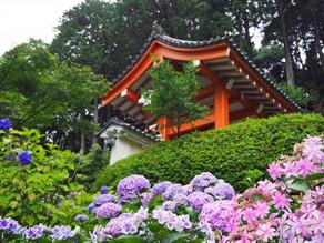 【京都】三室戸寺