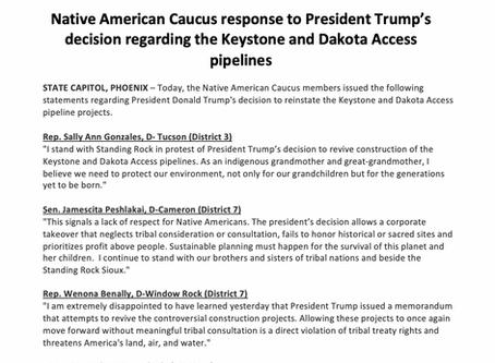 Native American Caucus Response to Trump pipeline decisions