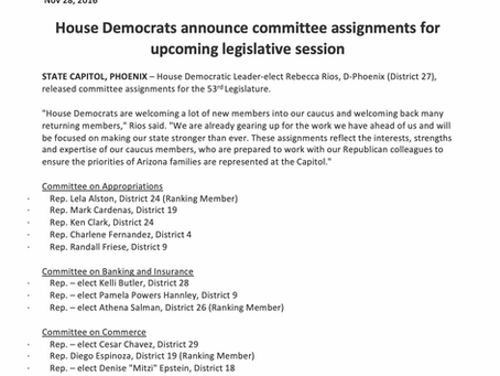 House Democrats announce committee assignments for upcoming legislative session
