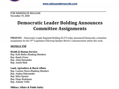 PRESS RELEASE: Democratic Leader Bolding Announces Committee Assignments