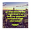 Thumbnail: Success In This City: Motivational Quotes for Positive Change