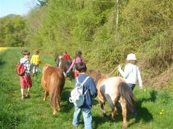 Balades avec les poneys