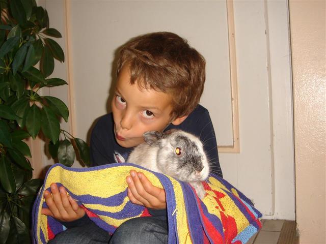 médiation animale zoothérapie