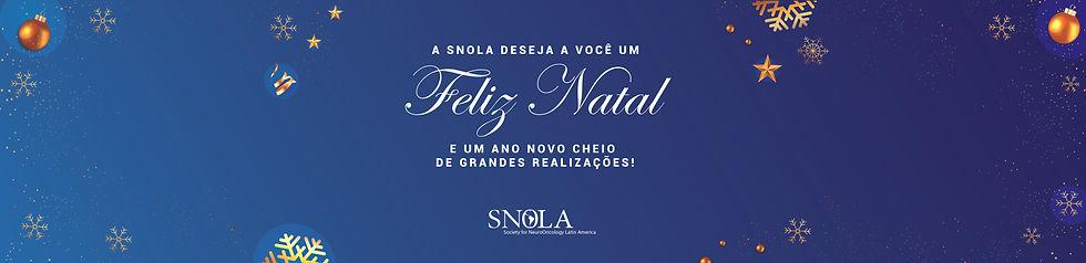 banner final de ano snola-01.jpg