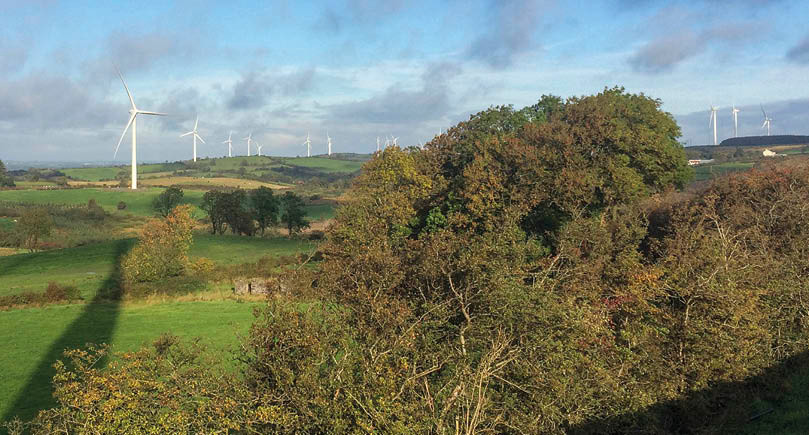 Knowing the rules around wind turbines has helped the business