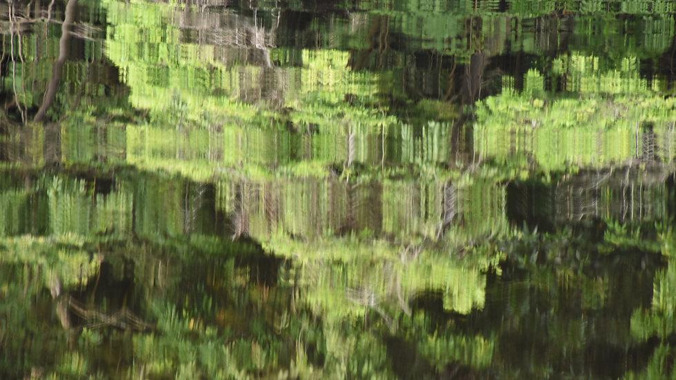 Reflections, Amazon