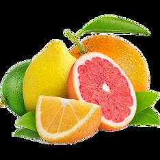 5403639-widescreen-330x330-pix-citrus-wa