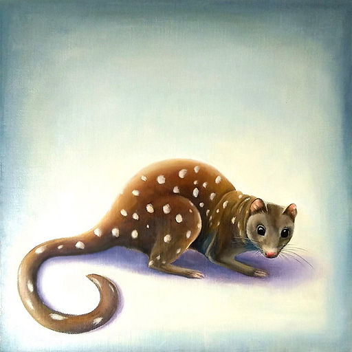 Spotted Quoll (01).jpg