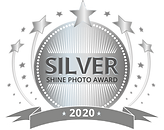 SHINE-Award-SILVER.png