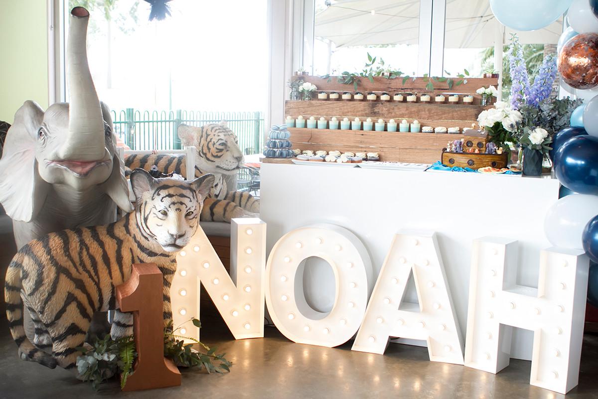 Noah's party Zena Photography.jpg