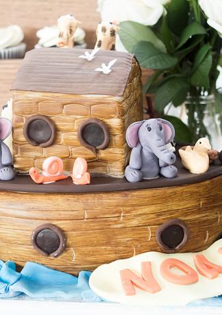 Noah's birthday cake Zena Photography.jp