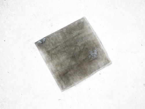 Silver napkin - the norm