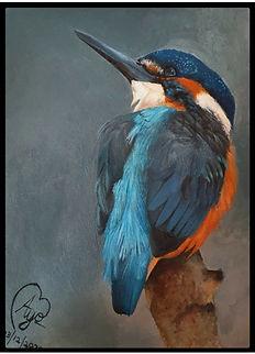 The Optimistic Kingfisher