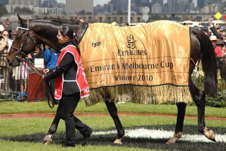 Melb Cup 2010 Americain rug.jpg