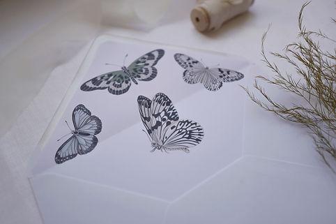 Colour-Butterfly-Suite---close-up-4.jpg