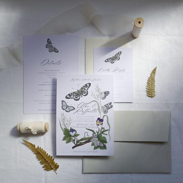 Colour Butterfly Suite 1 copy.jpg