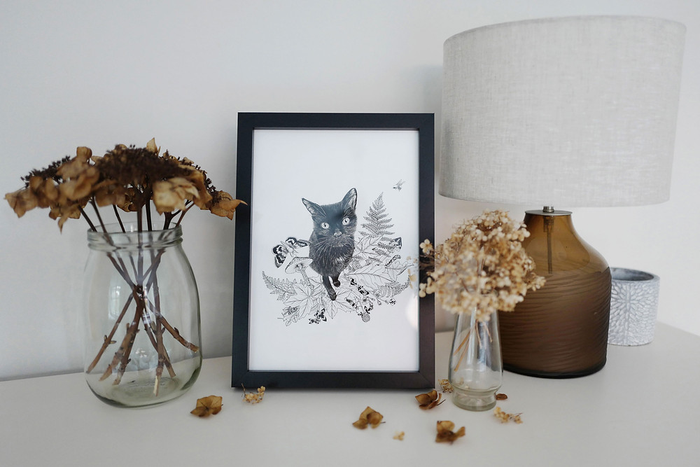 Framed Ink Cat Portrait Illustration by Simona Matuozzo