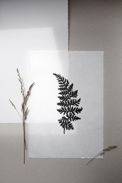 Fern Lino Print