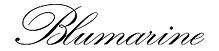 JSMusic Scored Blumarine online video composition production Jonathan Saguez