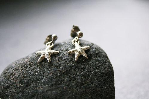 Seestern-Ohrhänger