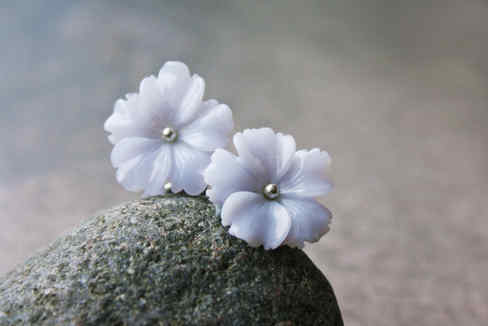 Hortensien-Blüten-Ohrstecker