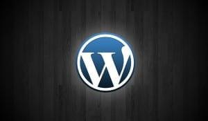 Wordpress 3.5 Logo