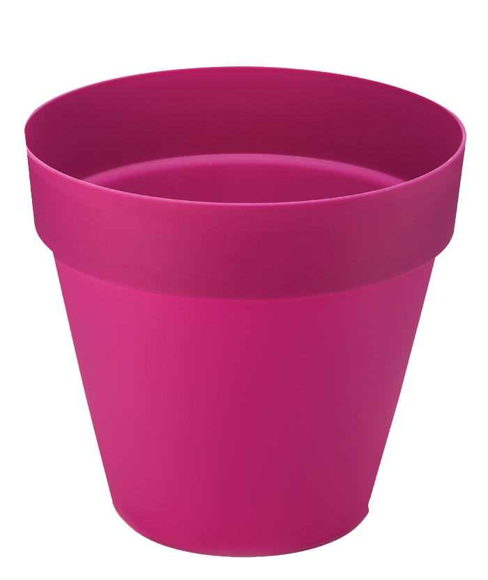 Classic Round Purple Pot