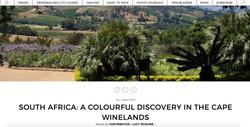 Cape winelands feature Suitcase