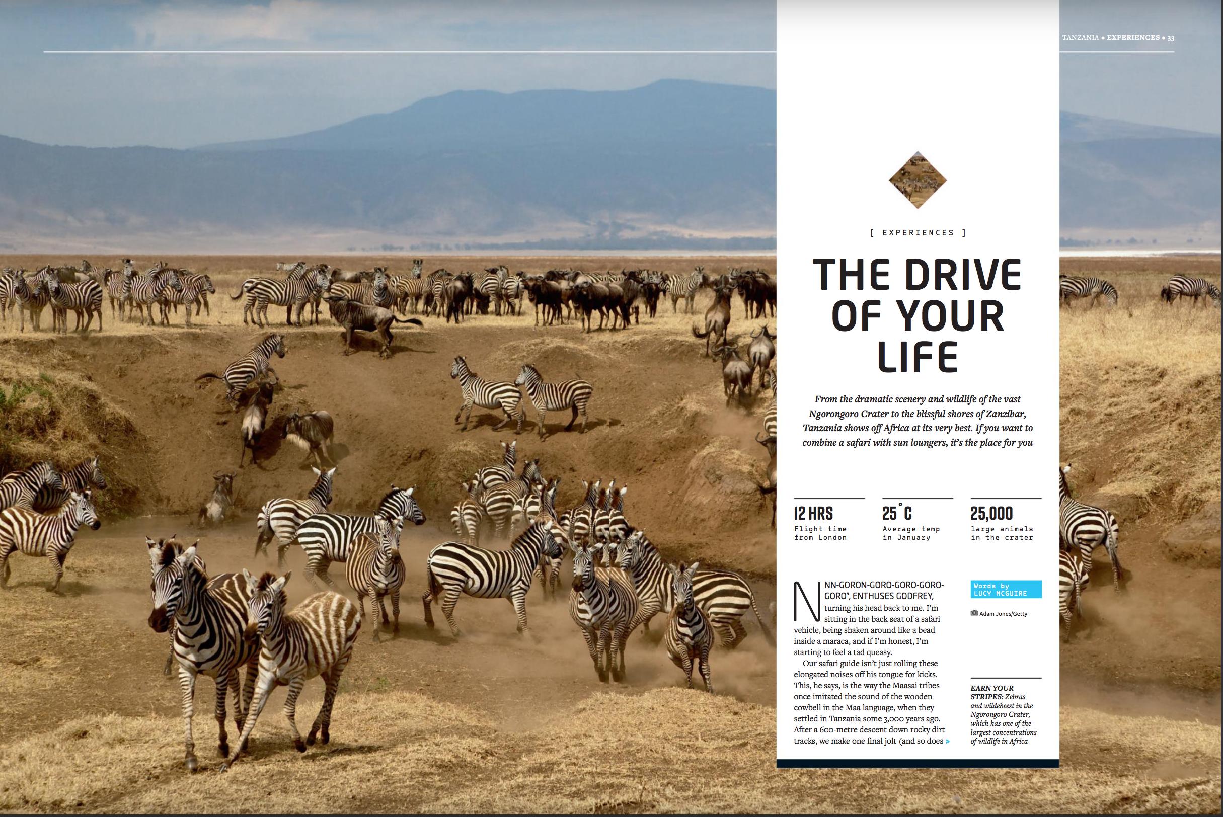 Ngorongoro: A Tanzania Safari