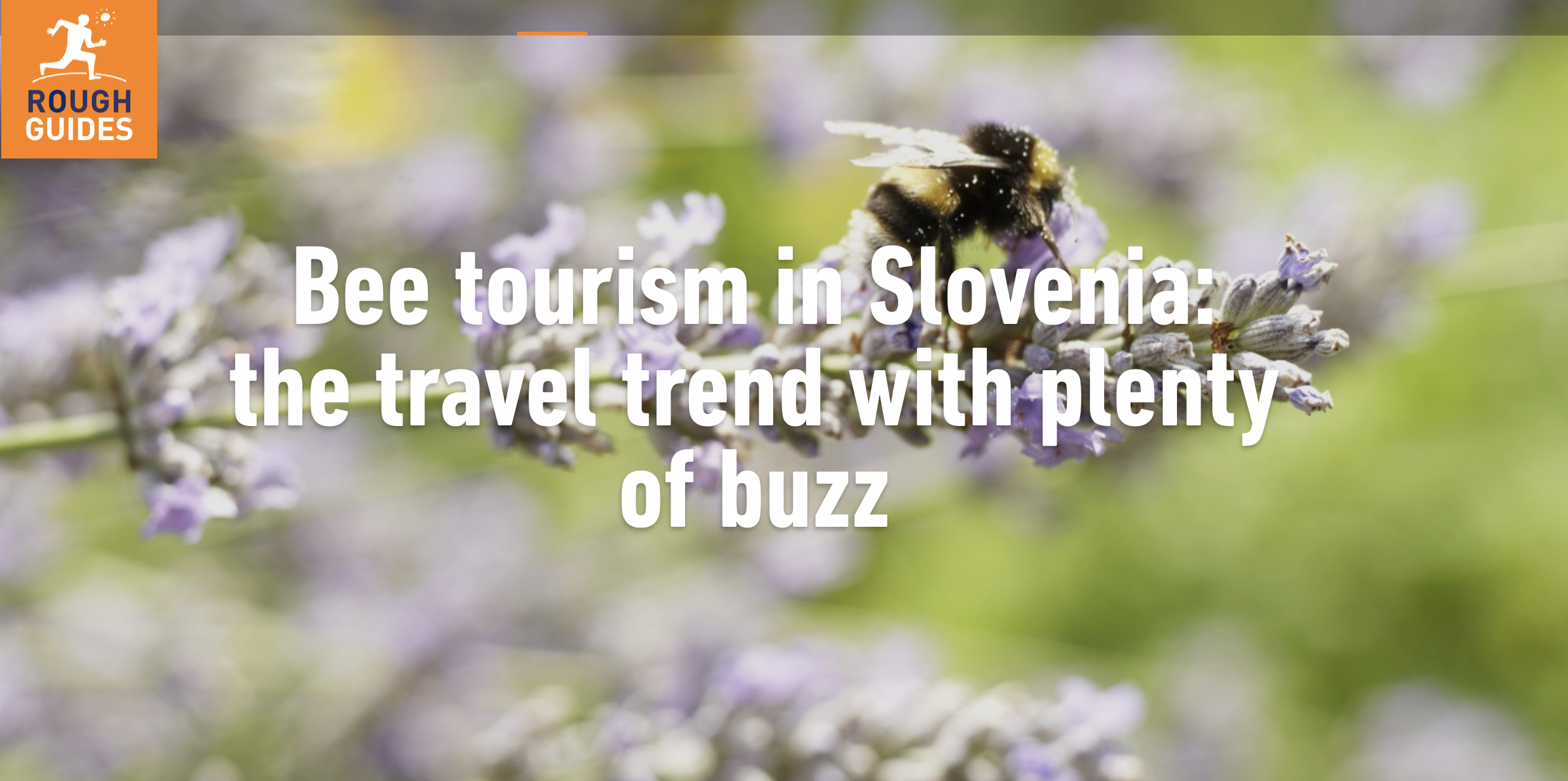 Bee Tourism Slovenia Rough Guides
