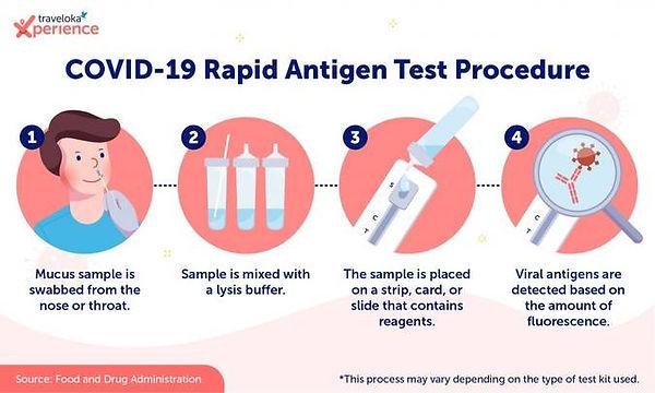 Infographic_Rapid-Antigen_EN-1024x615.jp
