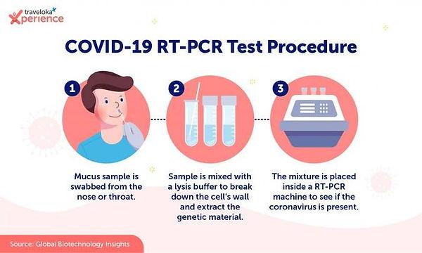 Infographic_PT-PCR_EN-1024x615.jpg