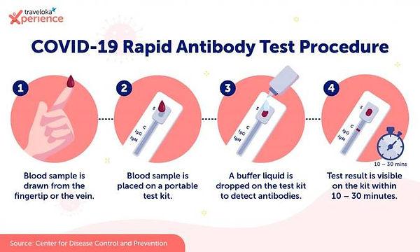 Infographic_Rapid-Antibody_EN-1024x615.j