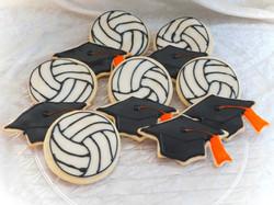 Volleyballgrad