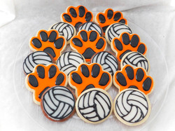 Tiger Volleyball