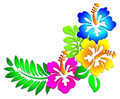 578-5783414_hawaii-border-cliparts-colou