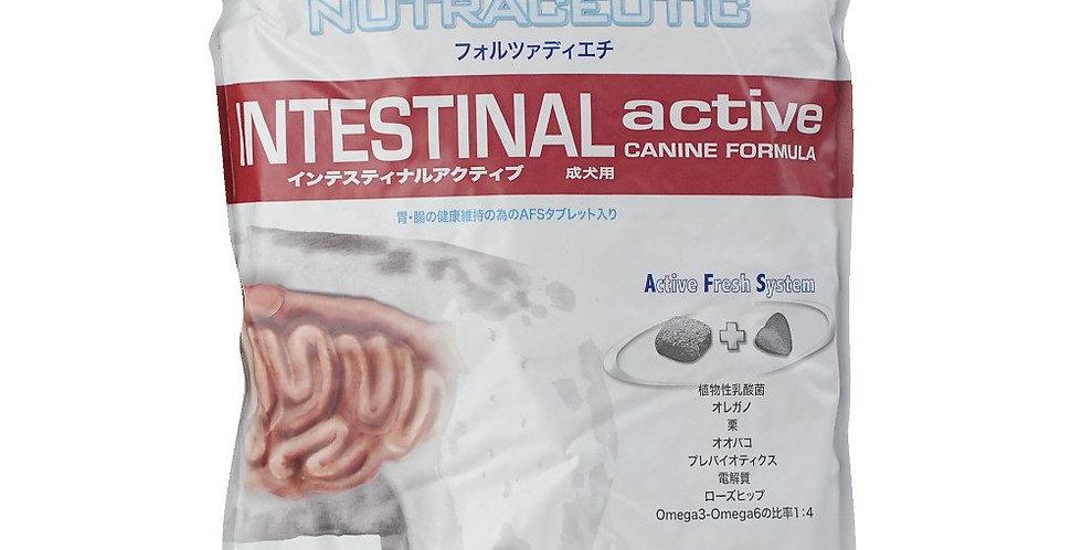 【Forza10】フォルツァディエチ インテスティナル アクティブ 胃腸・消化器ケア療法食 2kg(小粒)