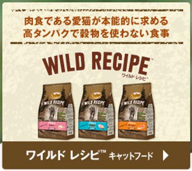 WILD RECIPE/Cat