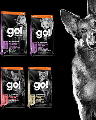 GO-SOLUTIONS-CARNIVORE-1-800x440a.jpg
