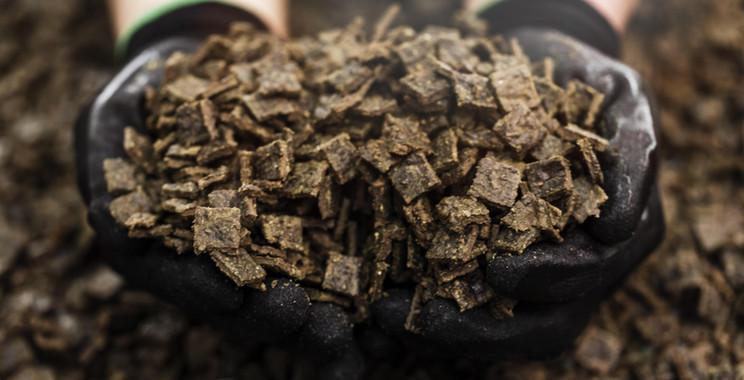 ziwipets-gently-air-dried-pet-food_0.jpg