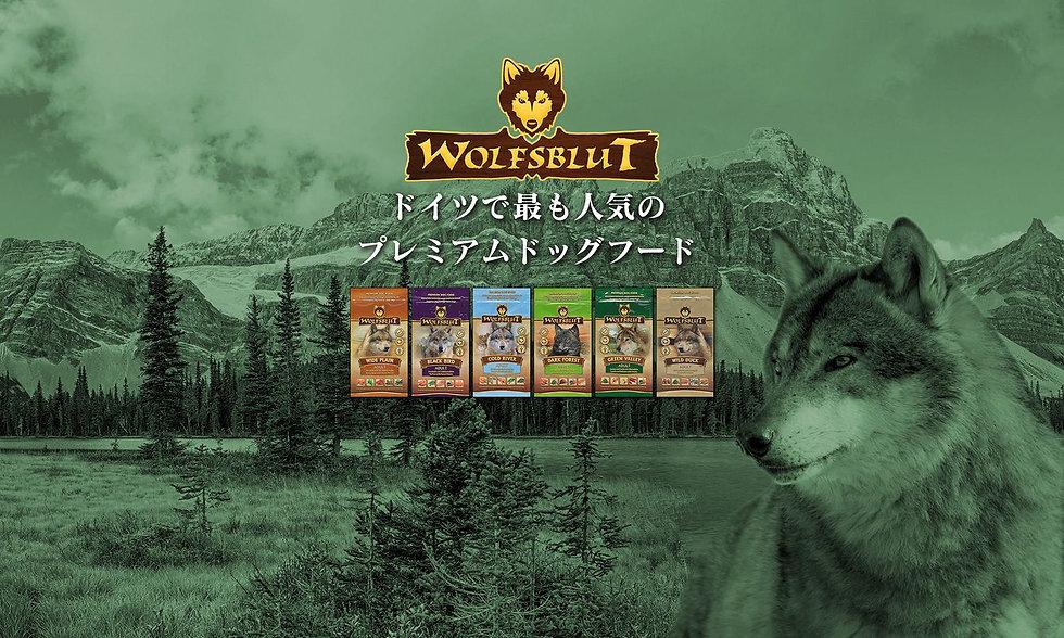 Wolfsblut-Top.jpg