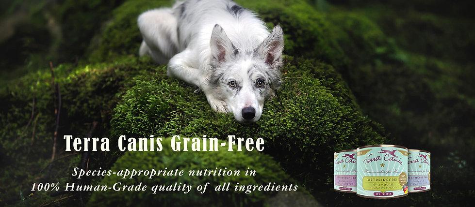 Terra Canis Grain-Free-New-slider.jpg