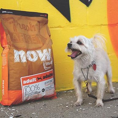 Now Fresh 犬用ドライフード