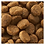 Thumbnail: 【Nutro WILD RECIPE】ワイルドレシピ(超小型犬~小型犬用) ビーフ 成犬用