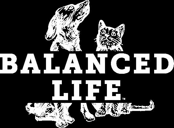 balancedLife.webp
