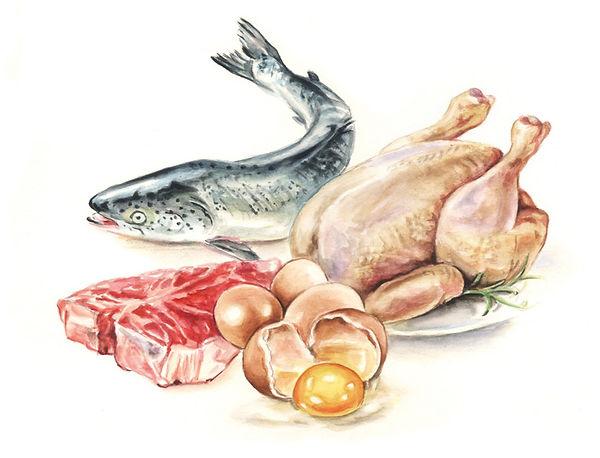 Fleisch-Proteine-Zeichnung-.jpg